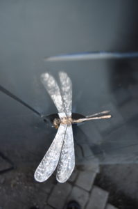 Dragonfly with wings reflecting on heron gate. Stainless steel and bronze.